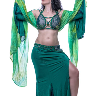 best bellydancer baltimore, best belly dancer baltimore, bellydance by amartia